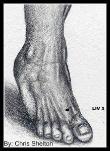Liver 3 (LV 3) for blog post