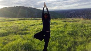 #SoulSpace- Yoga Tree on grass knoll